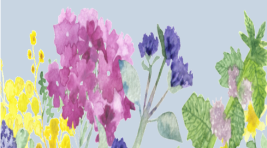 « Se soigner avec les plantes » par Aline Mercan phytothérapeute