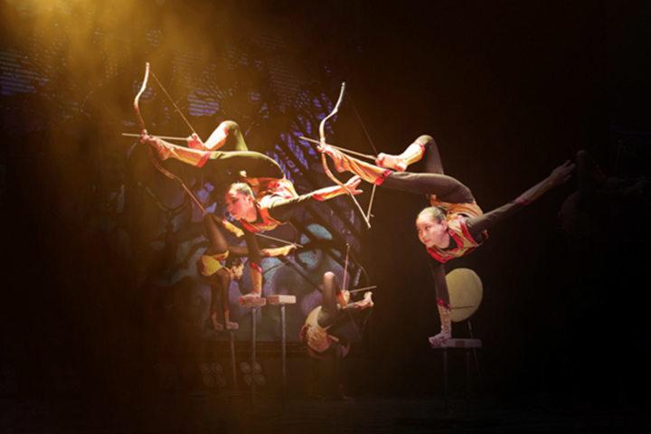 Cirque Phénix - Nomade